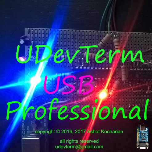 UDevTerm USB Professional icon